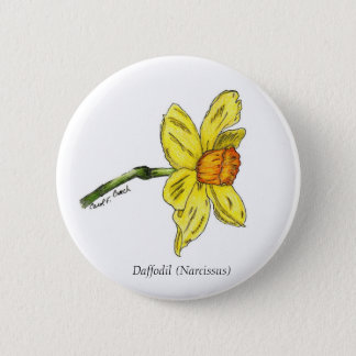 Daffodil (Narcissus) Button