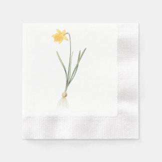daffodil(Narcissus pseudo-narcissus) by Redouté Paper Serviettes