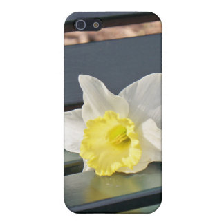 Daffodil on a Park Bench iPhone 4 Case