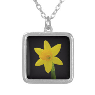 Daffodil on Black Silver Plated Necklace