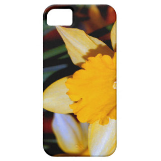 Daffodil  the flower for 10th anniversary barely there iPhone 5 case