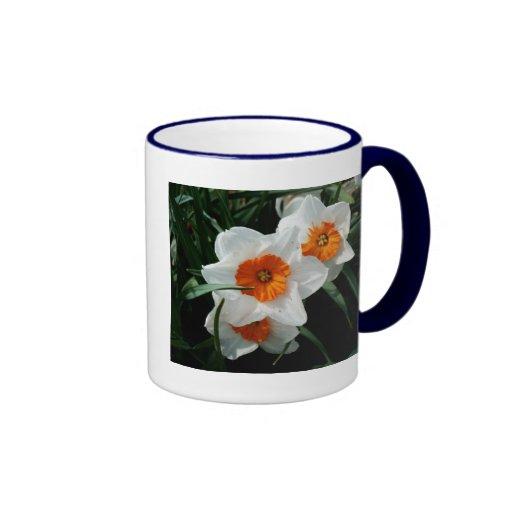 Daffodil Trio Mug