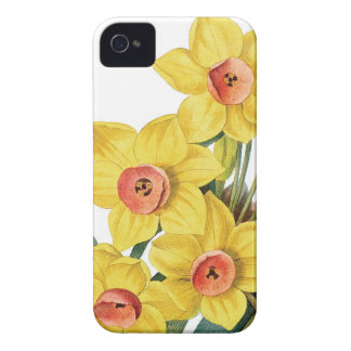Daffodills Redoute illustration Case-Mate iPhone 4 Cases