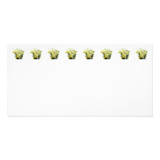 Daffodils and Buds Photo Card Template