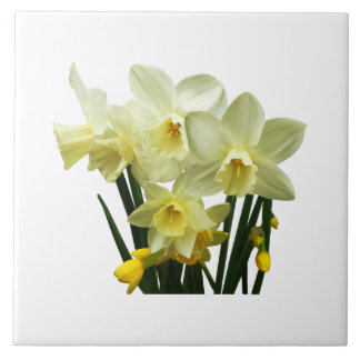 Daffodils and Buds Tiles