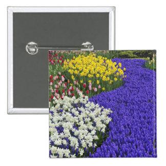 Daffodils and Grape Hyacinth, Keukenhof 2 15 Cm Square Badge