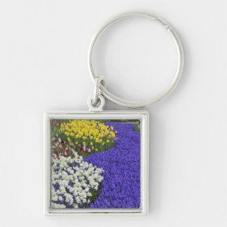 Daffodils and Grape Hyacinth, Keukenhof 2 Silver-Colored Square Key Ring