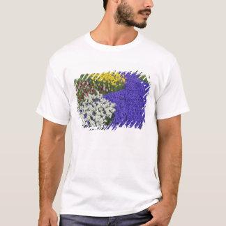 Daffodils and Grape Hyacinth, Keukenhof 2 T-Shirt
