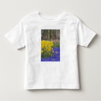 Daffodils and Grape Hyacinth, Keukenhof Toddler T-Shirt
