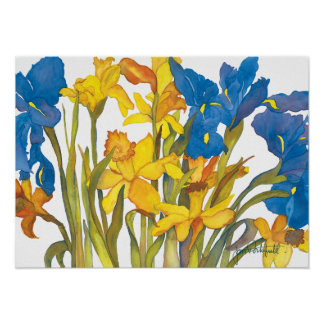 Daffodils and Iris Poster