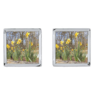 Daffodils at Easter Cufflinks Silver Finish Cuff Links