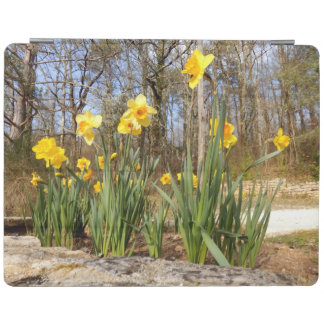 Daffodils at Easter iPad Cover