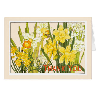 Daffodils, Botanicals Card - Customize Greeting