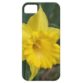 daffodils iPhone 5 case