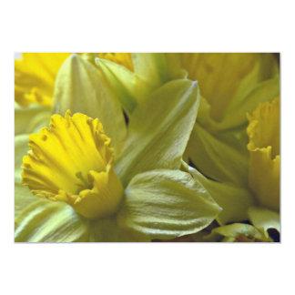 Daffodils Closeup flowers Invitations