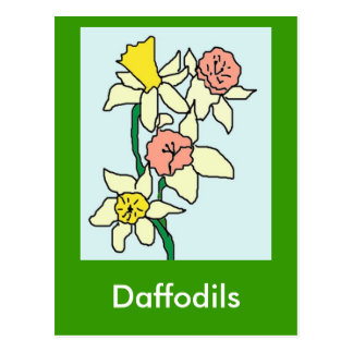 daffodils drawing, Daffodils Postcard