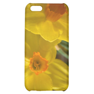 Daffodils Cover For iPhone 5C
