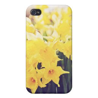 Daffodils iPhone 4 Case