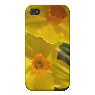 Daffodils iPhone 4/4S Cover