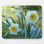 Daffodils - Mousemat Mouse Pad