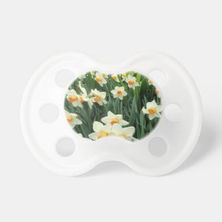 Daffodils Pacifier