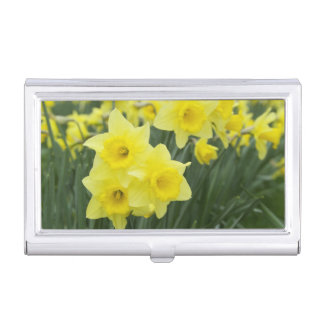 Daffodils RF) Business Card Holder