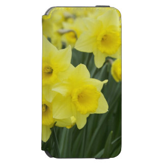 Daffodils RF) Incipio Watson™ iPhone 6 Wallet Case
