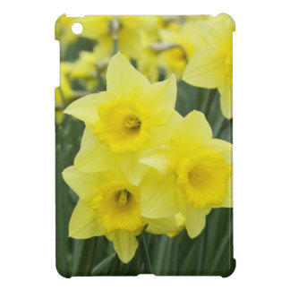Daffodils RF) iPad Mini Cover