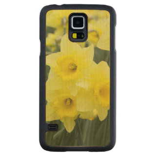 Daffodils RF) Maple Galaxy S5 Slim Case