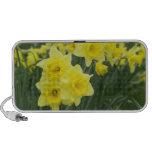 Daffodils RF) Mp3 Speakers