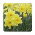 Daffodils RF) Puzzle Coaster