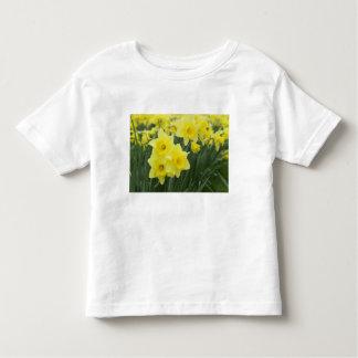Daffodils RF) Toddler T-Shirt