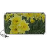 Daffodils RF) Travel Speaker