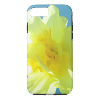 Daffodils, spring life case