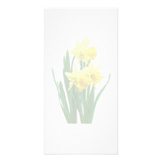 Daffodils Tall and Short Photo Card Template