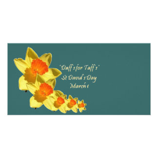Daffs For Taffs On Transparent Backgound Customized Photo Card