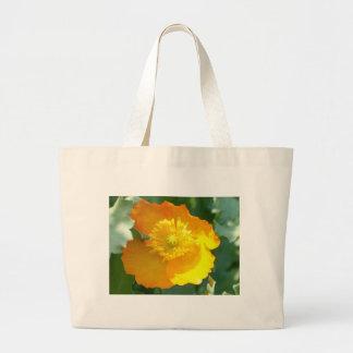 daffy canvas bag