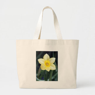 Daffy Day Bags