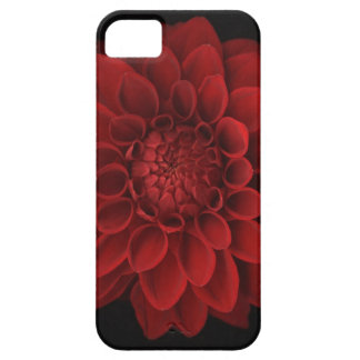 Dahlia 4 barely there iPhone 5 case