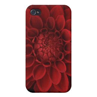 Dahlia 4 iPhone 4 covers