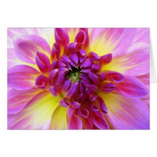 Dahlia Blank Greeting Card