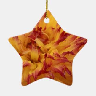 Dahlia Ceramic Star Decoration
