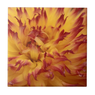 Dahlia Ceramic Tile