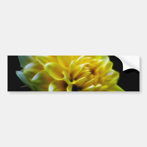 Dahlia flower and meaning bumper stickers