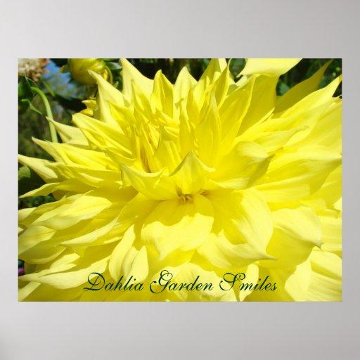Dahlia Garden Smiles art prints gifts Gardens Print