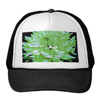 Dahlia - Honeymoon  - earth tone - green - Cap