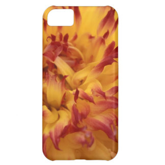 Dahlia iPhone 5C Case