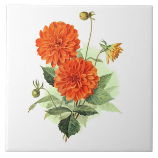 Dahlia 'Orange Fire King' Large Square Tile