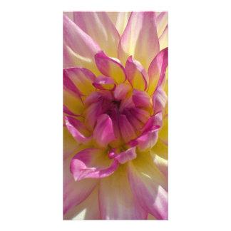Dahlia Photo Cards