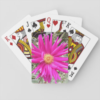 Dahlia playing cards 1